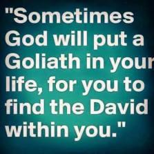 David and Goliath - 2016