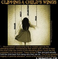 .causes.com/campaigns/44310-bring-awareness-to-parental-alienation-in-family-court