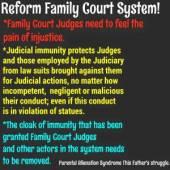 judicial-descretion-immunity-2015