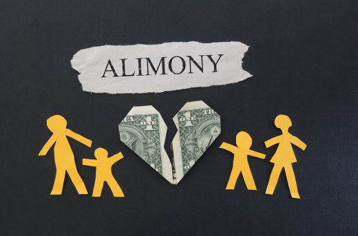 is-florida-s-governor-scott-making-alimony-reform-political-again1